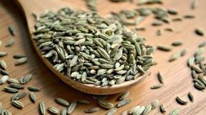 کرونا/ تاثیر قابل توجه گیاه رازیانه در درمان عفونت کرونا