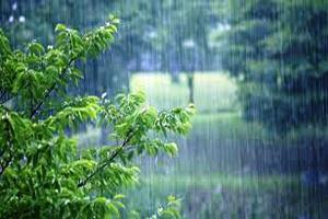 تداوم رگبار باران در استان یزد