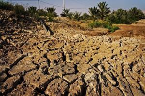 قشم گرفتار بحران خشکسالی است
