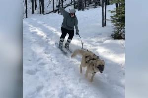 مسابقه هیجانانگیز و جالب سگ با یک اسکیباز!