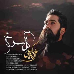 آهنگ «گل سرخ» با صدای علی زندوکیلی