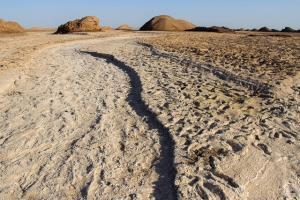 ۲ راه برای نجات ایران از خشکسالی