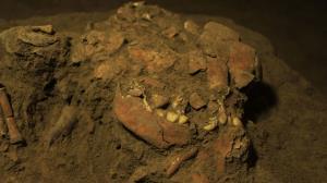 دیانای سالم زنی ۷۲۰۰ ساله از ناشناختههای مهاجرت انسانهای اولیه پرده برمیدارد
