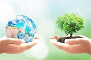 تولید برق و کمپوست از زباله/تبدیل ضایعات MDF به محصولات با ارزش افزوده بالا