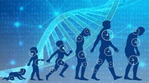 ۴ روش ساده برای افزایش طول عمر و سلامتی بدن
