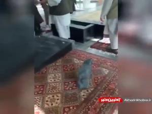 ویدئویی از تخریب قبر احمد شاه مسعود توسط طالبان