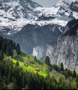 آلپ،بخش سوئیس..🇨🇭
