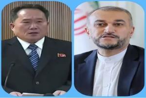وزیر خارجه کره شمالی آغاز به کار «امیر عبداللهیان» را تبریک گفت