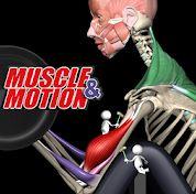 مطابق با آناتومی بدنتان ورزش کنید