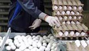 دولت دوازدهم چگونه بازار تخممرغ را به هم ریخت؟