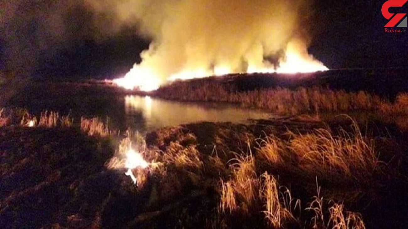 گردشگران پارک ملی بوجاق را آتش زدند