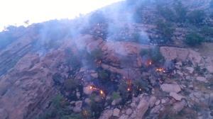 استاندار: با عاملان آتشسوزی عمدی جنگلهای کهگیلویه و بویراحمد برخورد شود