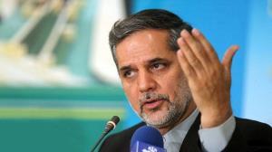 نقوی حسینی: تیم اقتصادی دولت هدفمند جلو میرود