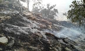 ۴۰ هکتار از منطقه حفاظتشده شالو و منگشت در آتش سوخت