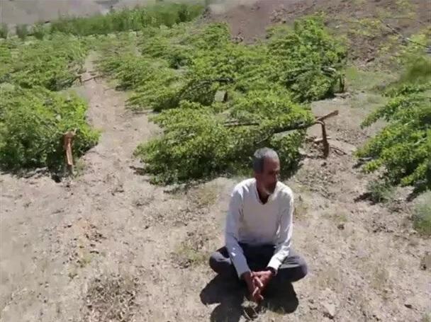 ۶ ماه از تخریب باغ کشاورز سنندجی بدون تحقق وعدهها گذشت