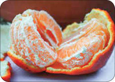 خواص میوه نارنگی