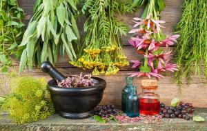 لطفا خود درمانی نکنید حتی با گیاهان دارویی