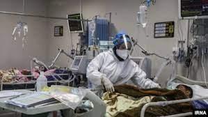 فوتیهای کرونا در بوشهر به کمترین میزان رسید