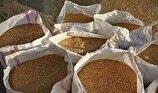 کشف یک هزار تن سبوس احتکاری در مازندران