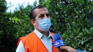 کاهش ۳۰ درصدی مگس مدیترانهای در مازندران