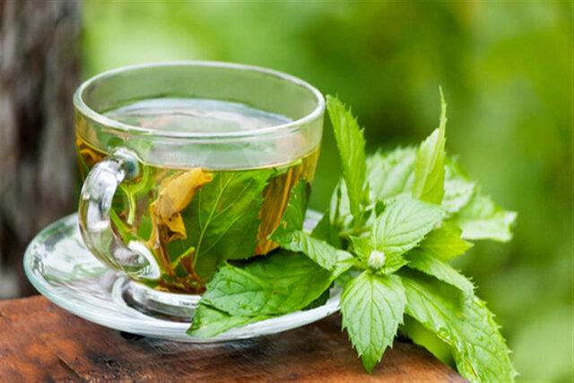 بادرنجبویه ، گیاهی برای تقویت قلب و انبساط روح