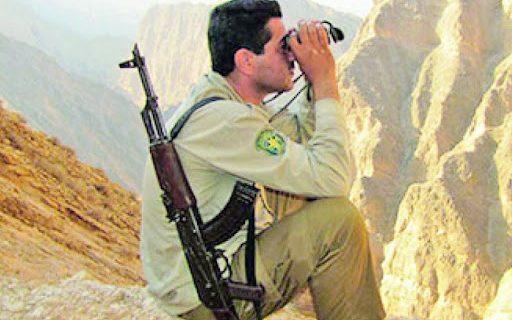٢٢۶ متخلف زیست محیطی در آذربایجانغربی دستگیر شدند