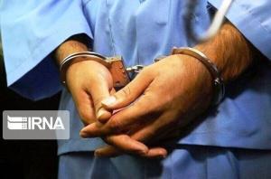 سارقان ۱۲ خانه در میناب دستگیر شدند