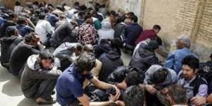 بازداشت معتادهای دره فرحزاد تهران از سوی پلیس
