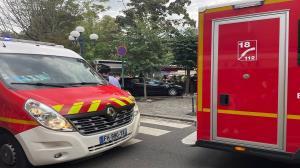 ورود مهمان ناخوانده به تراس رستورانی در فرانسه