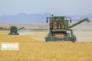 گندم مورد نیاز لرستان از بندر امام خمینی(ره) تامین شود
