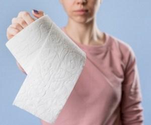 قدیما بجای دستمال توالت از چی استفاده میشد؟