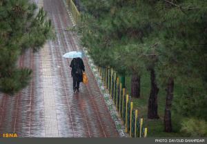 پیشبینی پاییز کم بارش و گرم بوشهر