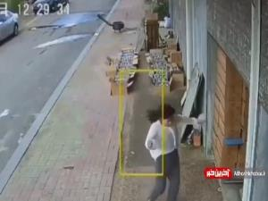 حمله یک حیوان خشمگین و درنده به یک زن