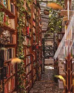 هر کتاب، هر تودهی مجلدی که اینجا میبینی دارای روحه