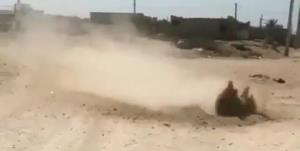 ماجرای جوشیدن عجیب خاک در بوشهر!