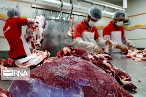 رئیس شبکه دامپزشکی فردوس: مردم از خرید گوشت چرخکرده فلهای پرهیز کنند
