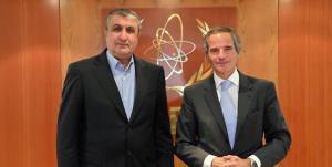 توئیت مدیرکل آژانس درباره دیدار با رئیس سازمان انرژی اتمی ایران