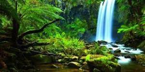 این طبیعت شگفت انگیز را در هیچ کشوری نخواهید دید!