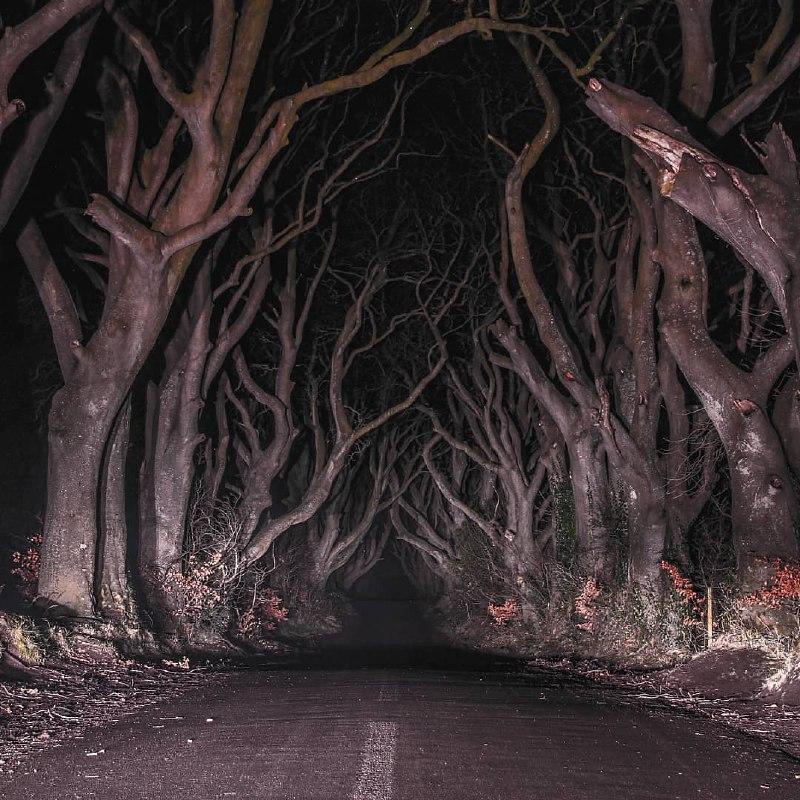 جاده وحشت در ایرلند شمالی