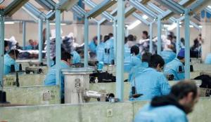 مدیرکل زندان های استان تهران: ضرورت اشتغال ۸۰ درصدی زندانیان