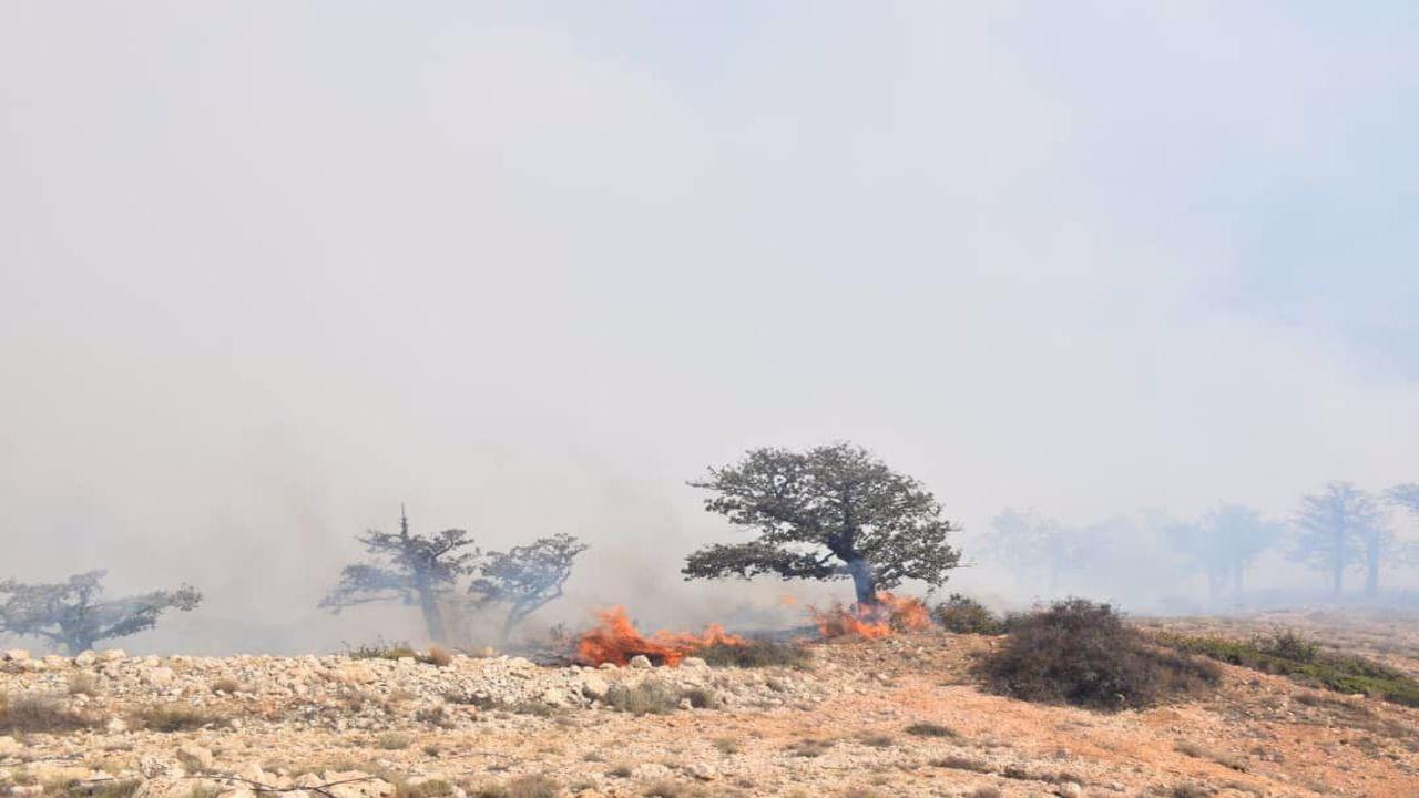 گسترش آتش در کوهستان درازنو؛ نیروهای امدادی امشب در منطقه می مانند