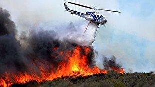 پیگیری ویژه دادگستری گلستان برای شناسایی عاملان آتش سوزی جنگلهای کردکوی