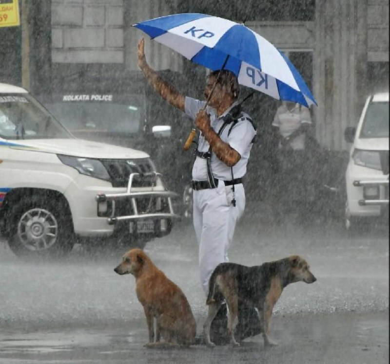 4گوشه دنیا/ کار زیبای پلیس هند در خیابان