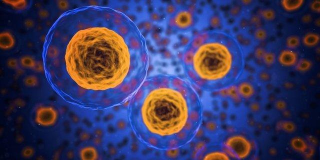 تولید آنزیمهایی برای بررسی فرآیند مرگ سلولی