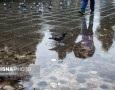 بارش باران، احتمال آبگرفتگی معابر و وقوع روان آب در گلستان