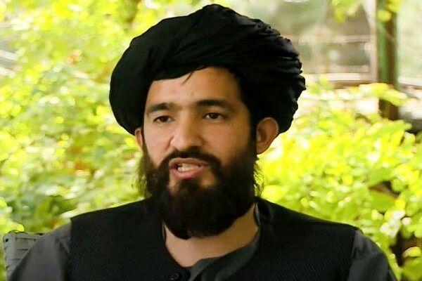 سخنگوی وزارت خارجه طالبان منصوب شد