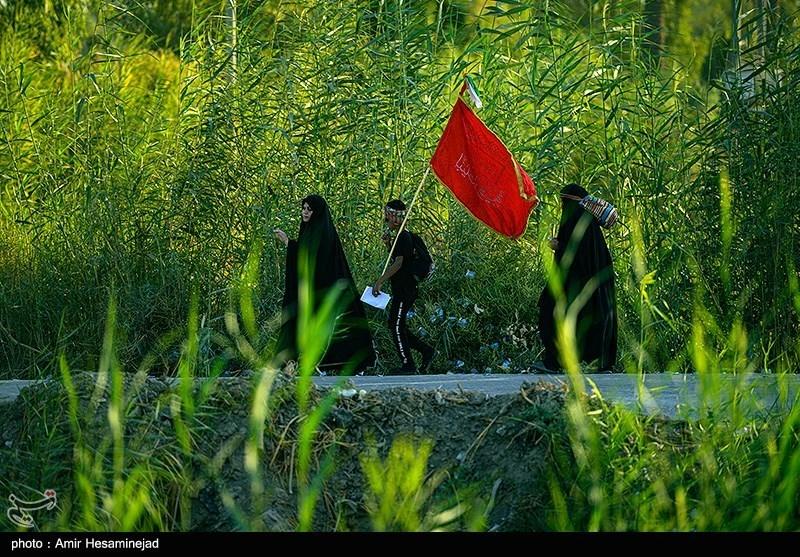 عکس/ هیاهوی زائران در مسیر نجف به کربلا