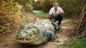 کشف تمساحی بزرگ و عجیب در فاضلابهای فلوریدا!