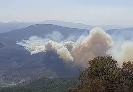 ورود دستگاه قضایی به آتش سوزی جنگل های کردکوی