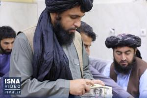چراغ سبز آمریکا به طالبان